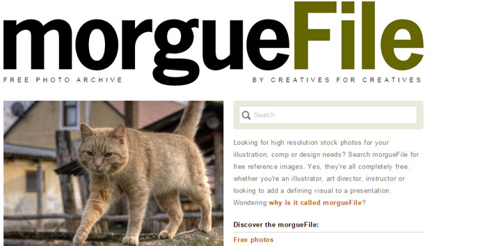 find free images from morguefile